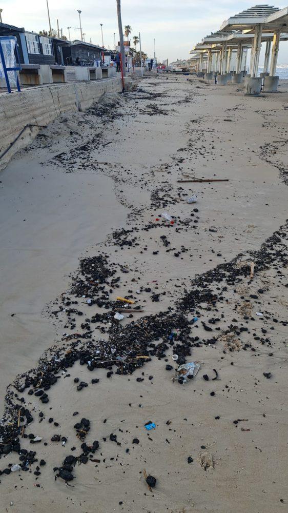 אסון הזפת: נחיתות בכל רצועת החוף של חיפה והזמנת מתנדבים | שבת 13/3/21 (צילום: עיריית חיפה - אגף החופים)