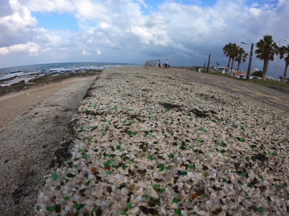 קיץ מזופת - אסון הזפת בחופים (צילום: מוטי מנדלסון)