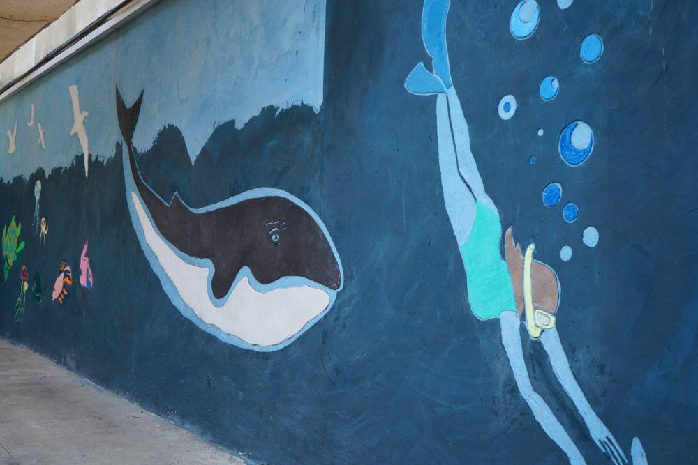 המוזיאון הימי הלאומי (צילום: מוזיאוני חיפה)