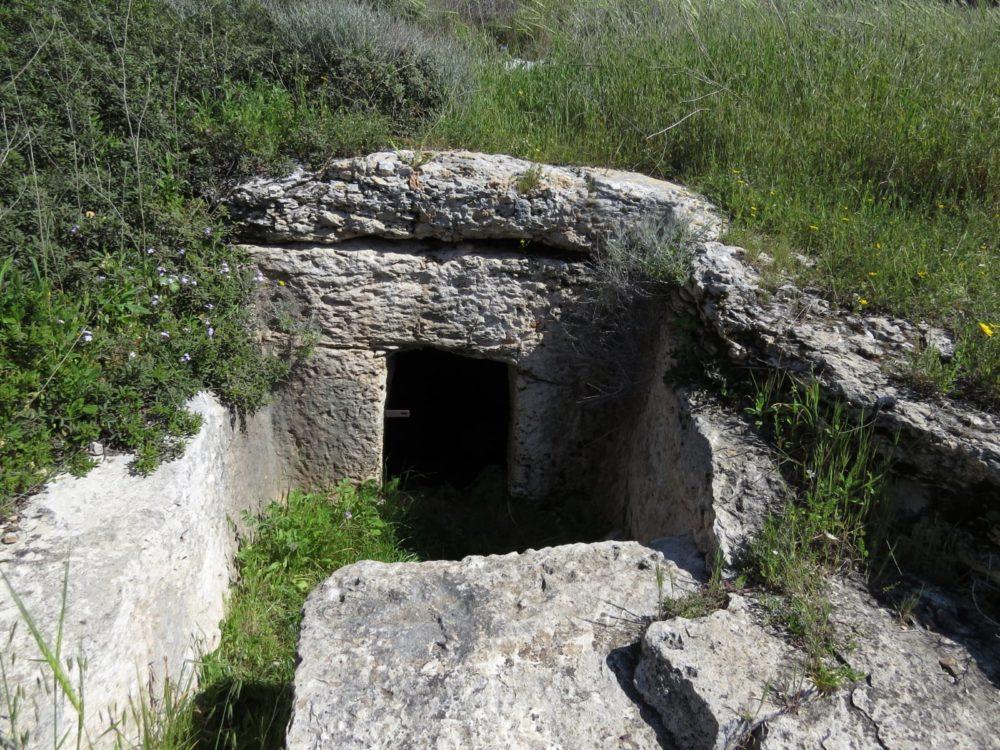 המערות מפעם (צילום: מוטי מנדלסון)