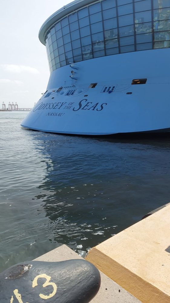 הרויאל קריביאן בנמל חיפה (צילום: חיים לייבה)