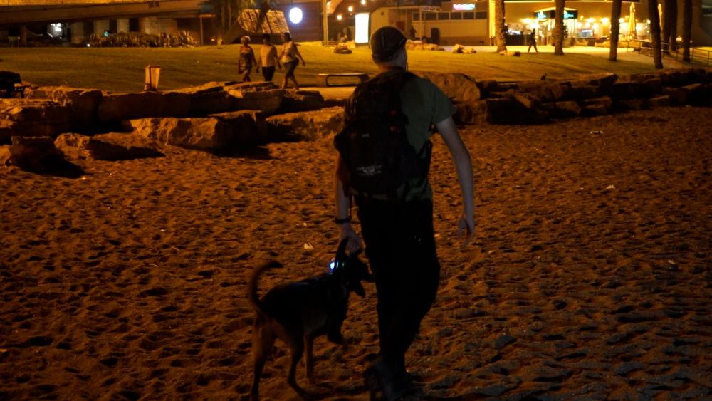 הכלבנים בפעילות מבצעית - איתור נעדרת בחיפה (צילום: ירון כרמי)
