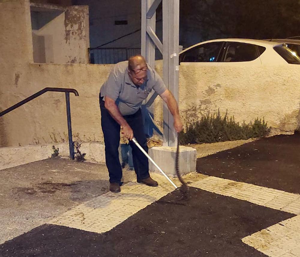 שמואל בראונשטיין לוכד נחש צפע ברחוב הרופא בחיפה (צילום: קרן אברהם)