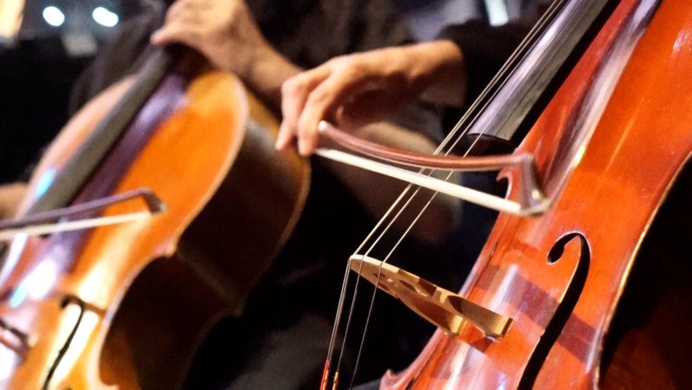 נגני צ'לו - האופרה 'טוסקה' באודיטוריום חיפה (צילום: ירון כרמי - חי פה)