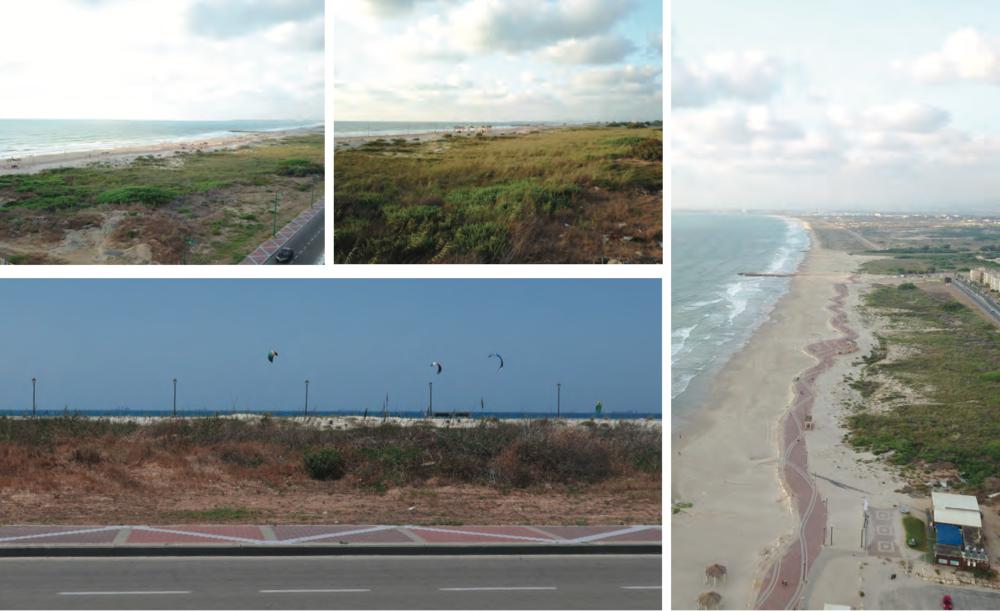 רצועת החוף - מצב קיים (צילום: מתוך אתר העירייה)