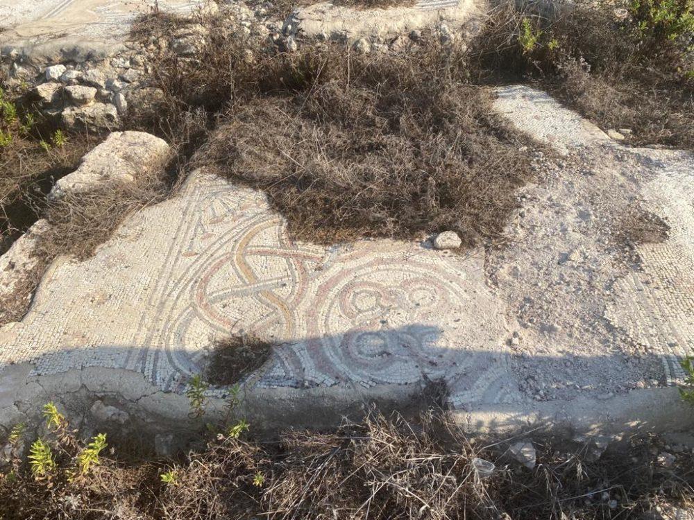 פסיפס בתל שקמונה (צילום: ג'יזאל גאנם)