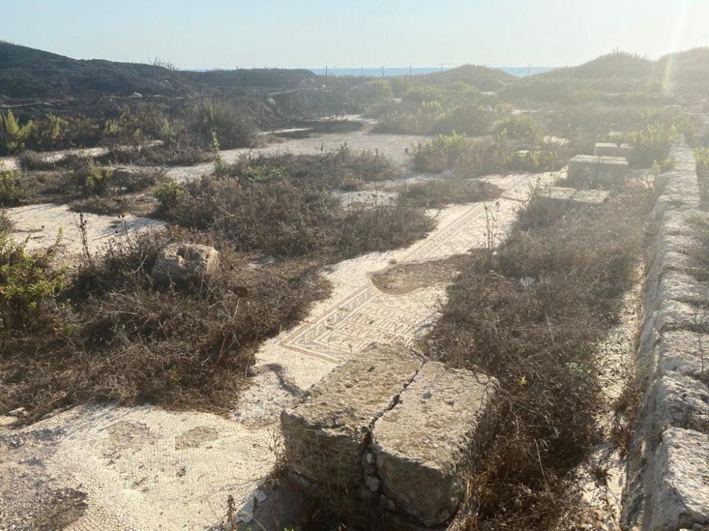 הריסות עתיקות בתל שקמונה (צילום: ג'יזאל גאנם)