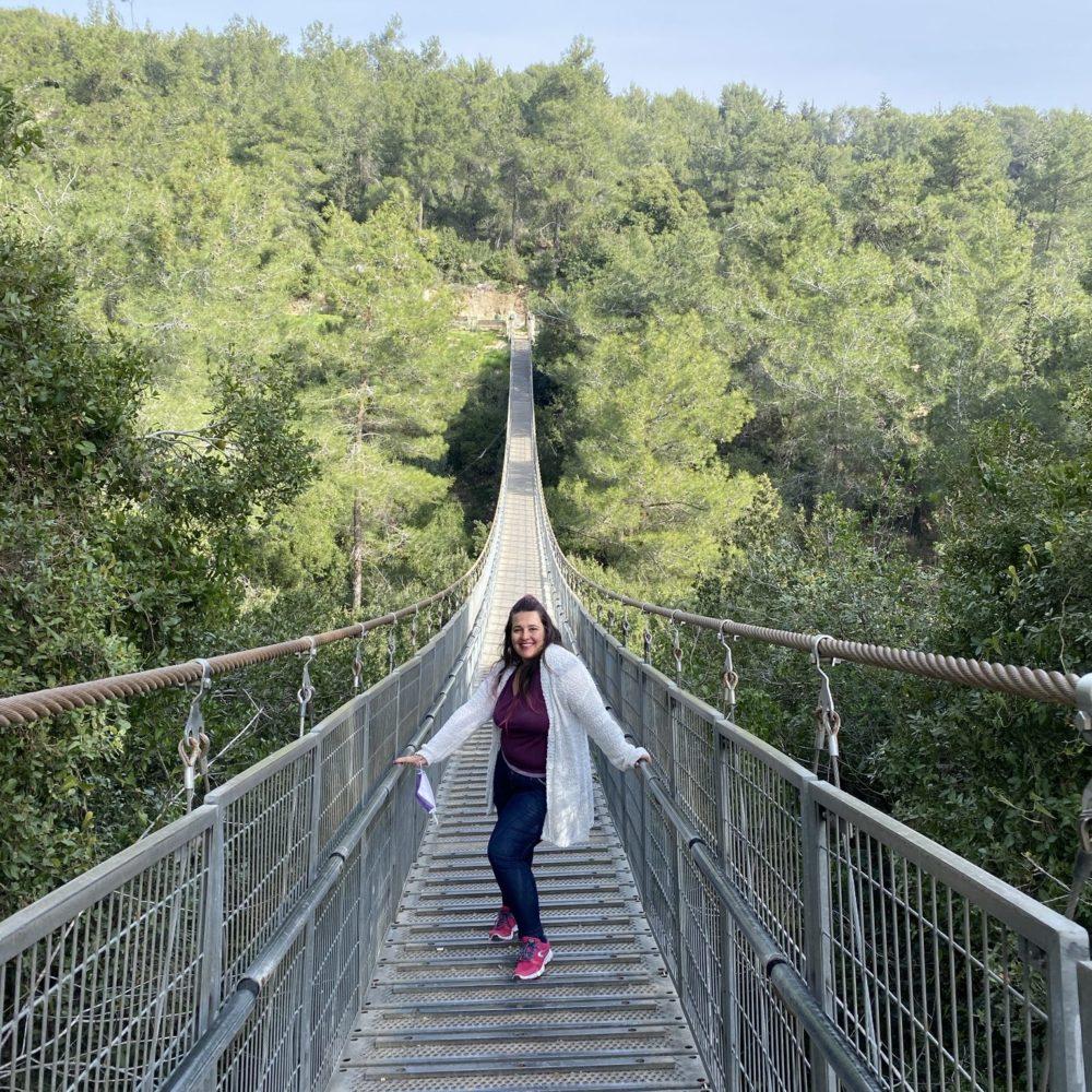 הגשרים התלויים בנשר (צילום: אבנית סטרולוב)
