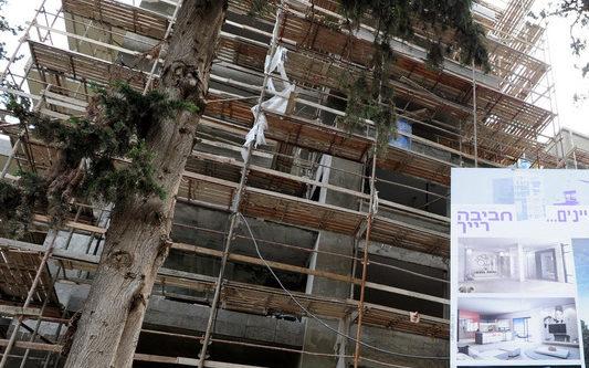 התחדשות עירונית ברחוב חביבה רייך בחיפה (צילום: ירון כרמי)